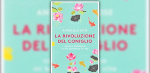 estratto-dal-libro-la-rivoluzione-del-coniglio