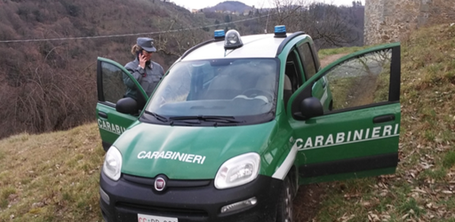 carabinieri-forestali-1728x800_c