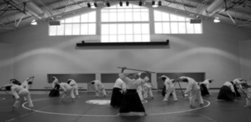 aikido-362959_640