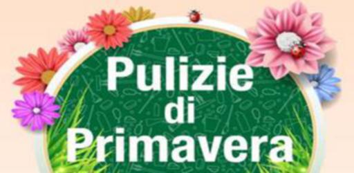 Pulizie3