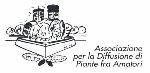 logo-adipa-jpg-22243.660x368