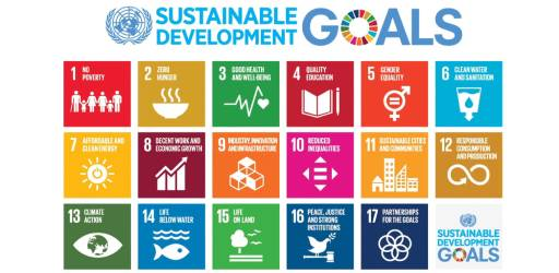 SDG ACADEMY (1)