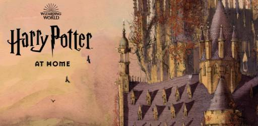 harry-potter-a-casa(2)